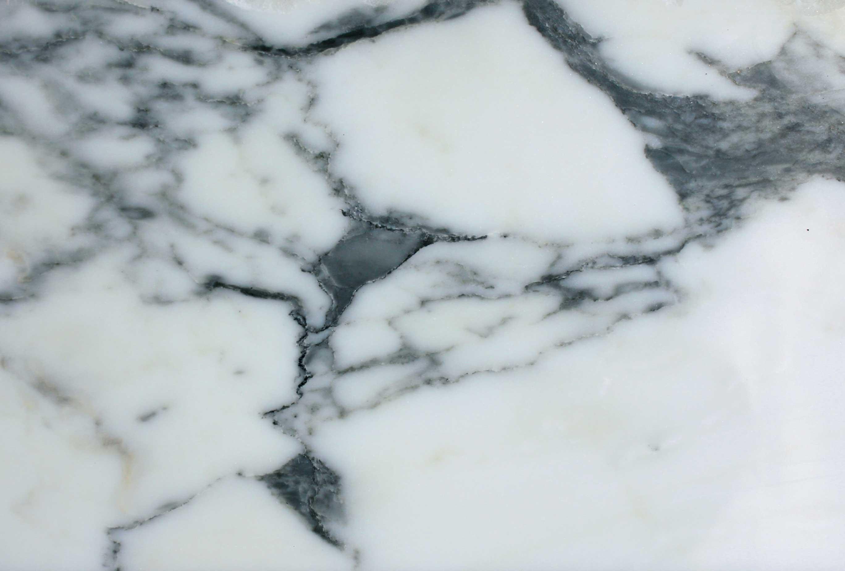 Arabescato Carrara Marble : Arabescato marble thistle rose